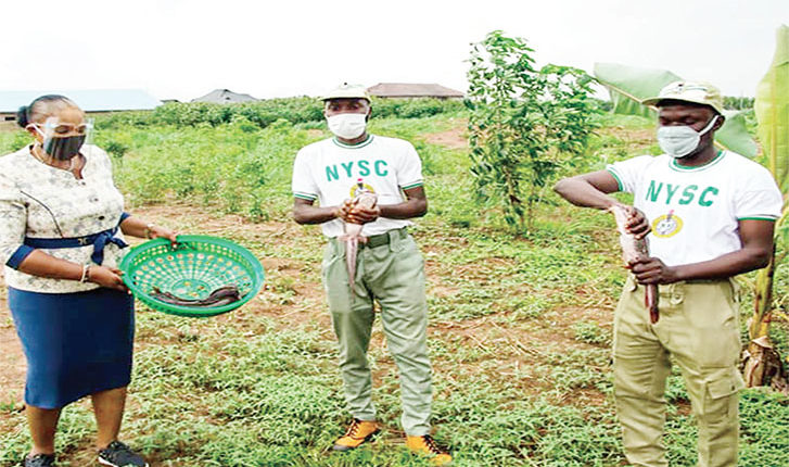 CBN, BOI partner NYSC to empower Corps members