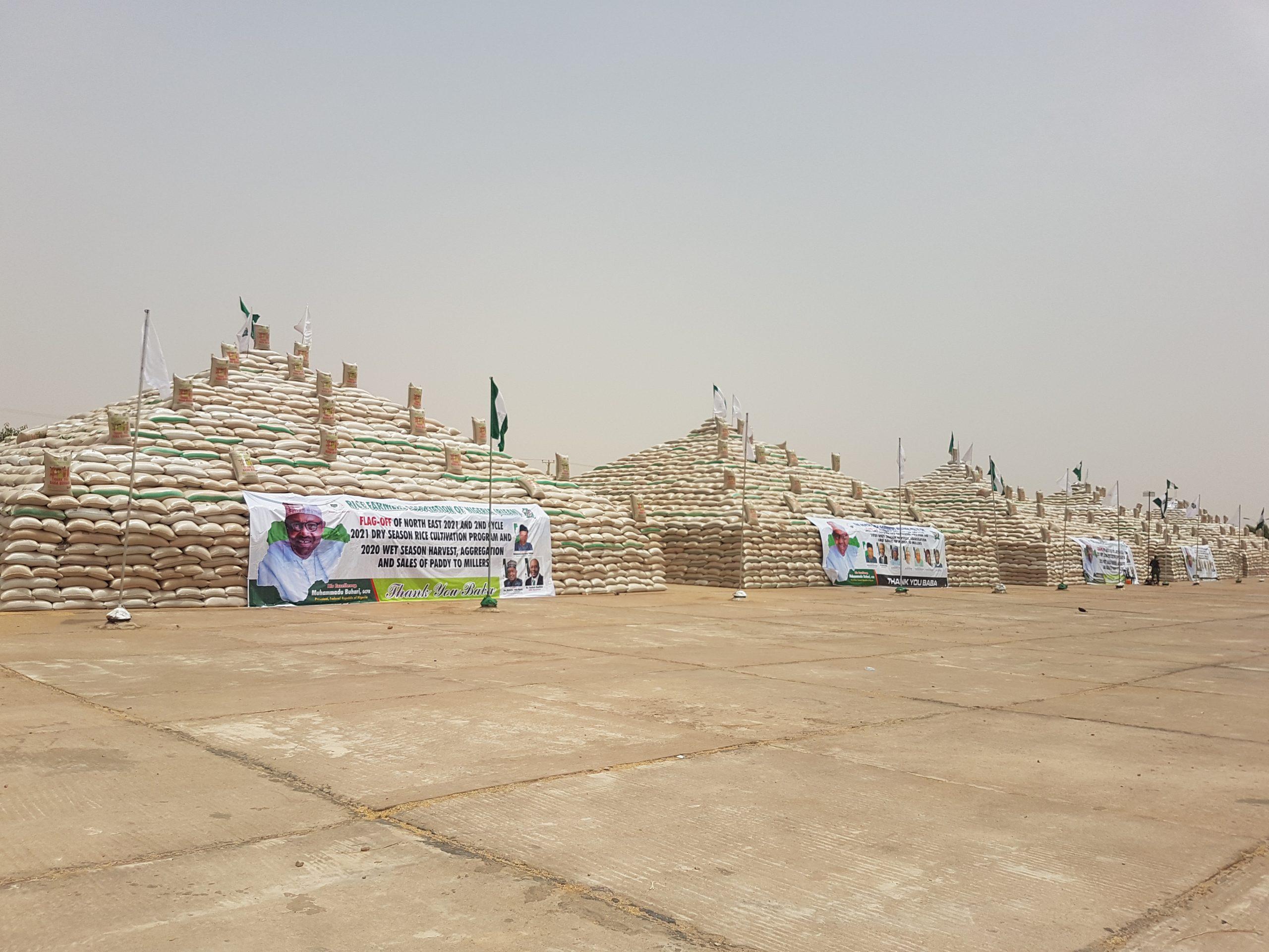 North East Rice Festival: Buhari assures Nigerians of more pyramids