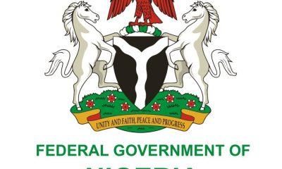 Nigerian govt issues travel advisory to citizens