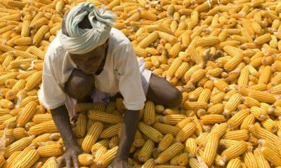 Coop to partner farmers to boost food production