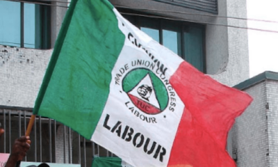 COVID-19: 20% of Nigerian workers lose jobs