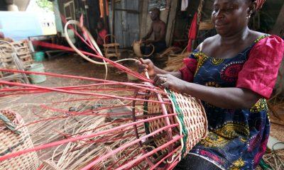UK to support 30 Nigerian female GreenTech entrepreneurs