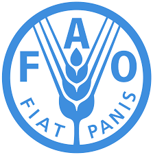 FAO to strengthen Nigerian MDAs' capacity