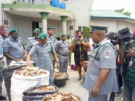 Nigerian Customs confiscates pangolin scales, claws worth over N1.7bn